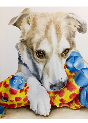 Pet Portrait- Watercolor
