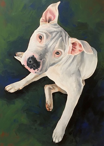 Pet Portrait- Acrylics
