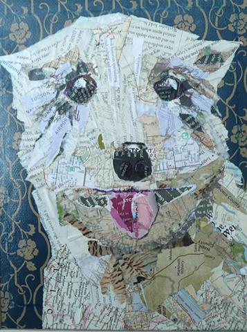 Dog's Eye View  series