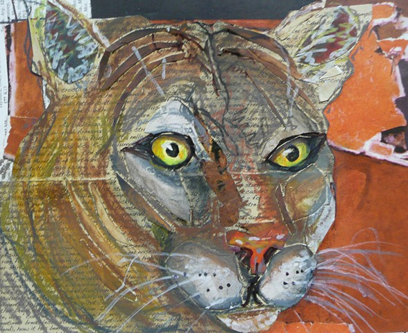 Florida Panther collage 8x6 image in 17 x 13 mat