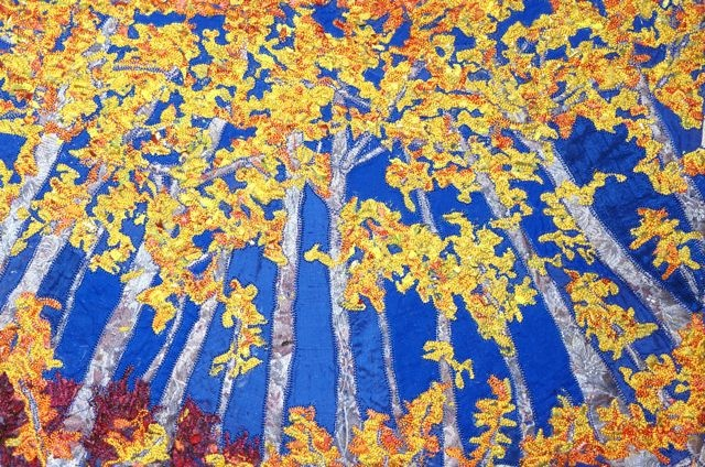 looking up autumn aspens