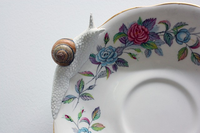snail on a floral plate by bethany krull
