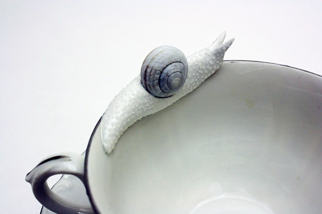 snail on a teacup by bethany krull