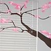 Cherry Blossom (view 1)