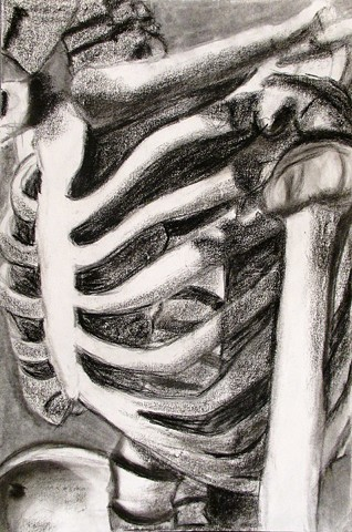 Skeleton_Composition_2