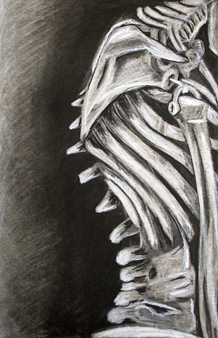 Skeleton_Composition_4