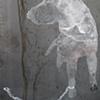 Rescued Dog #1023 (Tuscaloosa)