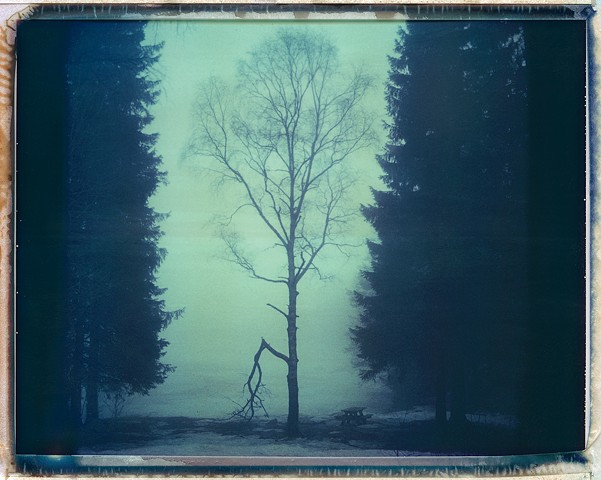 Norway winter 2014, Polaroid 669