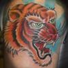 Jon's tiger