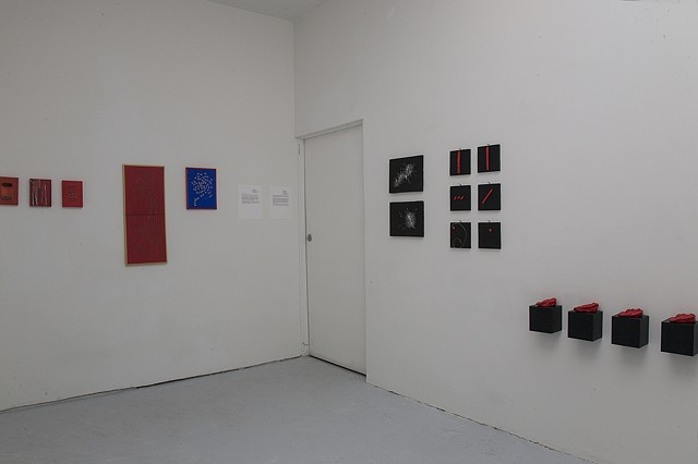 Gallery Installation View II