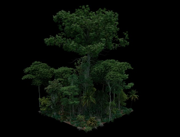 3D Isometric Jungle