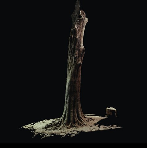 3d scan of tree using photogrammetry