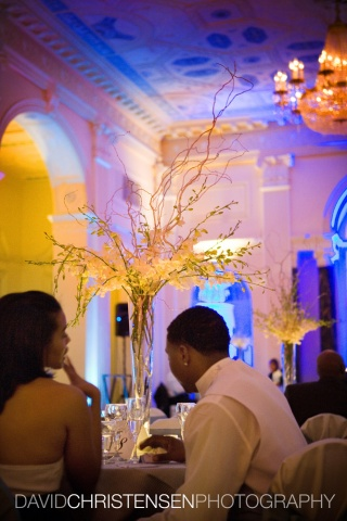 Spray of curly willow and white dendrobium orchids in a clear fluted vase accent the Biltmore Ballroom's reception tables beautifully.