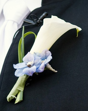 White Calla Lily Boutonniere Altmix Photograph Single white calla lily, accented w/ lily grass and light blue delphinium bloodms.