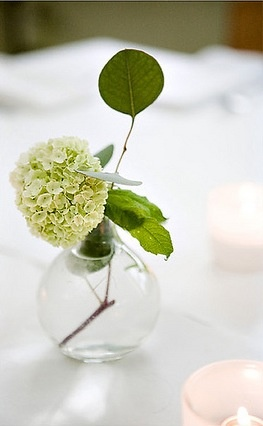 Stacey Bode Photography Small sprig of viburnum in a clear glass vase to accent a highboy.