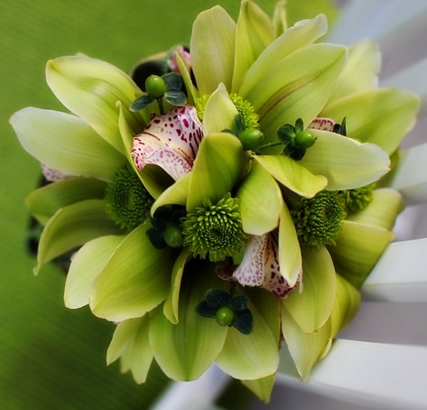 Hand-tied Bouquet composed of Green Cymbidium Orchids with a Burgundy Throat, Green Button Mums, and Green Hypericum Berries. Liana Lehman Photography