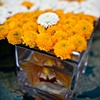 Modern Orange Tablescape Detail