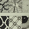 Texture Sampler