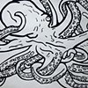 Ambidextrous Cephalopodus