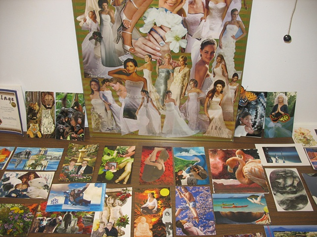 Group Display of Images: Sr. Center 2008