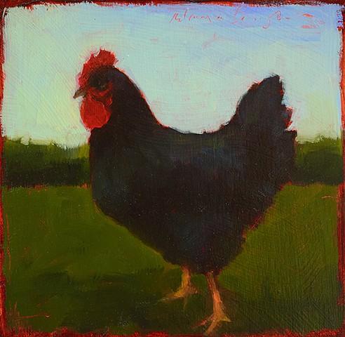 Chicken Study 1152