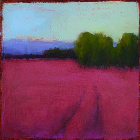 Landscape Study 1135