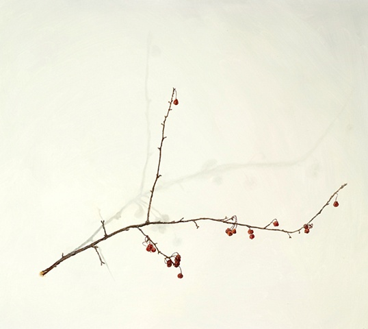 oil on paper of berries on branch