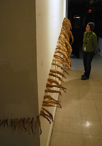 Hannah Verlin Plastic installation