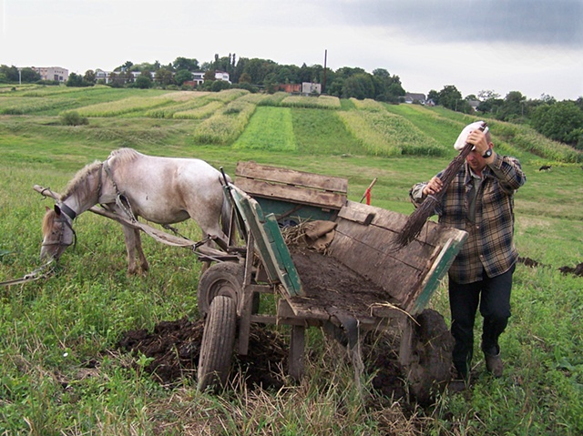 Spreading manure on the fields
