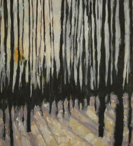 Woods 1