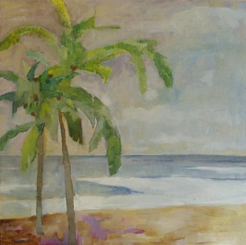 Palms, Costa de Oro