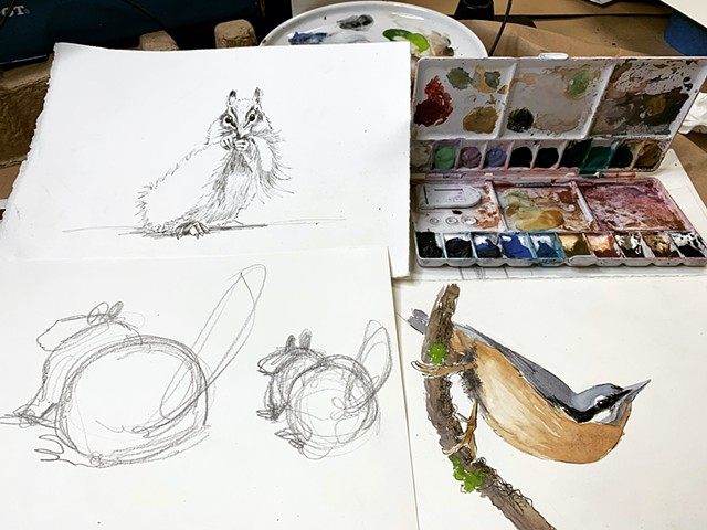 Nature Drawing Class