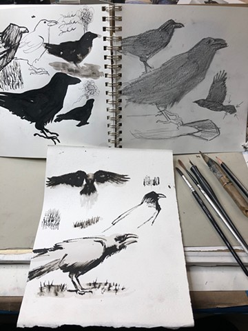 Nature Drawing-crows!