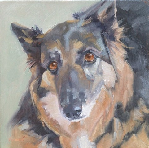 pet portrait commission, dog painting, oil painting, Patti Vincent, dog art