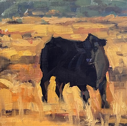Cow art, cow painting, oil painting, animal art, colorado