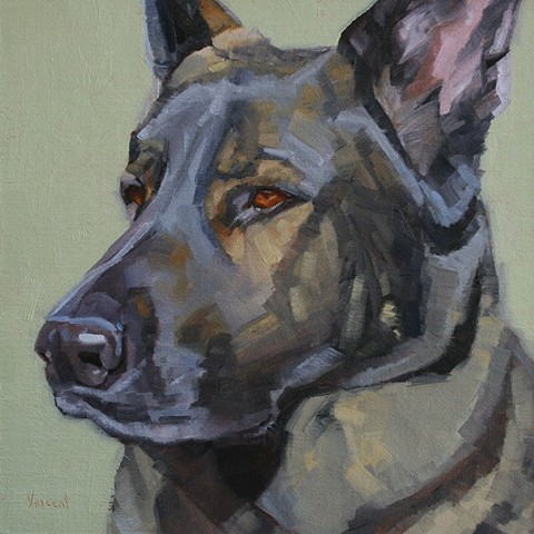 oil painting of a German Shepherd, pet portrait, dog painting, Patti Vincent art
