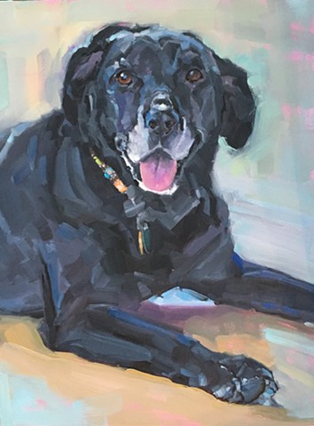 Dog art, oil painting, fine art, pet portrait commission, Patti Vincent art, Patti Vincent, black dog, black lab