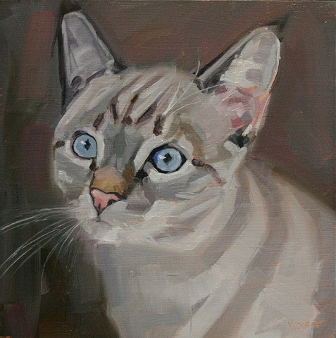 cat, cat art, pet portrait