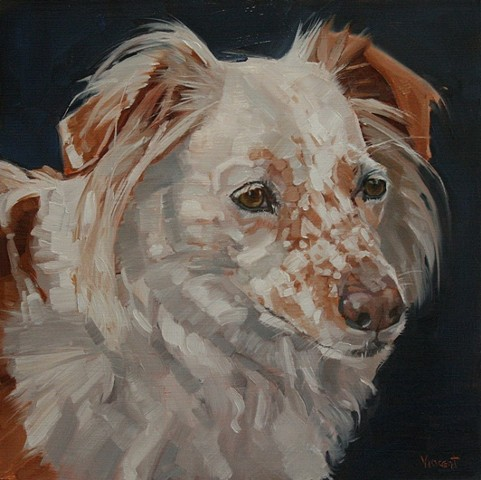 pet portrait commission, commission, dog, painting, oil painting, animal