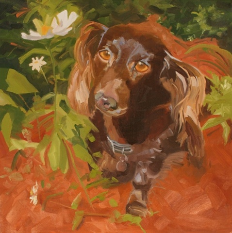 dog portrait, oil painting, commission