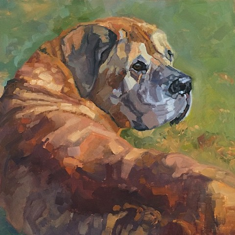 pet portrait, dog painting, dog art, patti vincent studio, patti vincent, art, oil painting