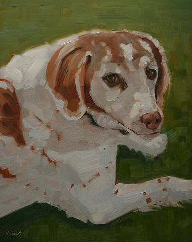 brittany spaniel, dog, pet portrait, dog painting, oil painting