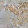 Untitled ( mushrooms )