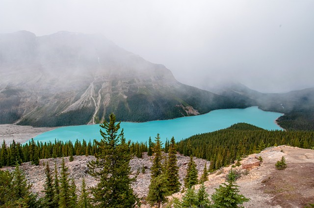 Glacial waters of Peyto Lake in Banff National Park Alberta
