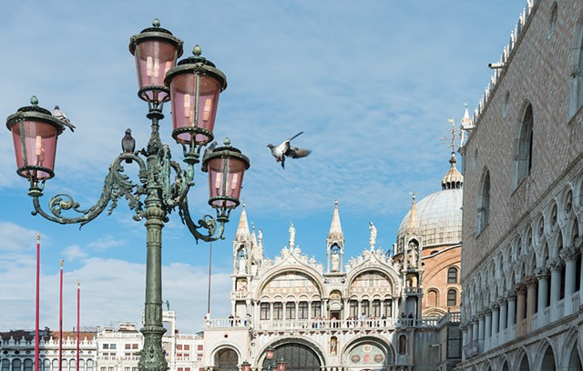 Bird landing on a lamp in Piazza San Marco in Venice Italy