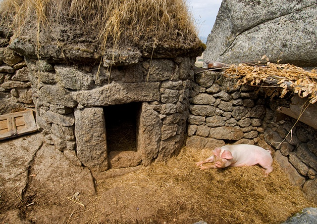A Pig's Abode, Portugal