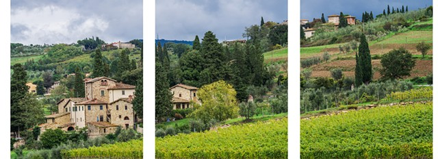 After the storm in Chianti region, vineyards and olive trees