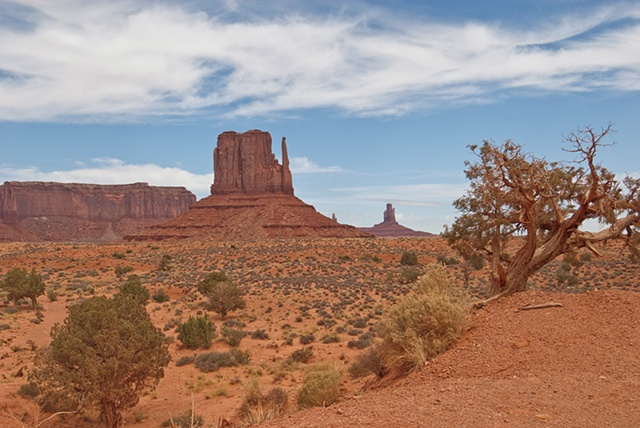 TheMitten and Cedar - Monument Valley  Arizona