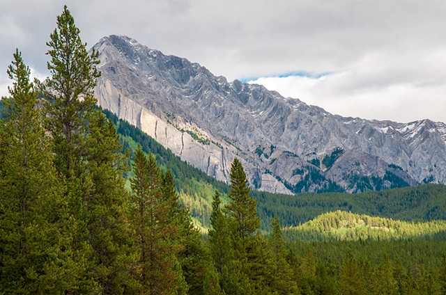 Mountains and trees as far as the eye can see in Banff National Park Canada