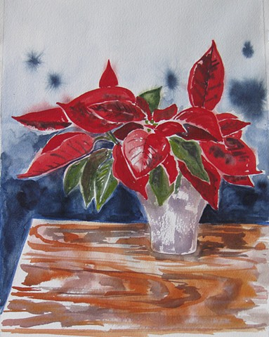 The Mysterious Poinsettia